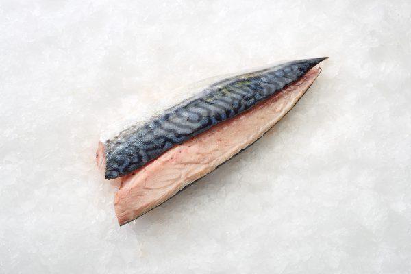 makreelfilet